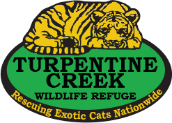 Turpentine Creek Wildlife Refuge Promo Code